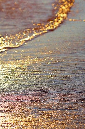 金色のひかりの粒と潮の粒