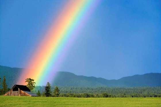 虹いただき虹